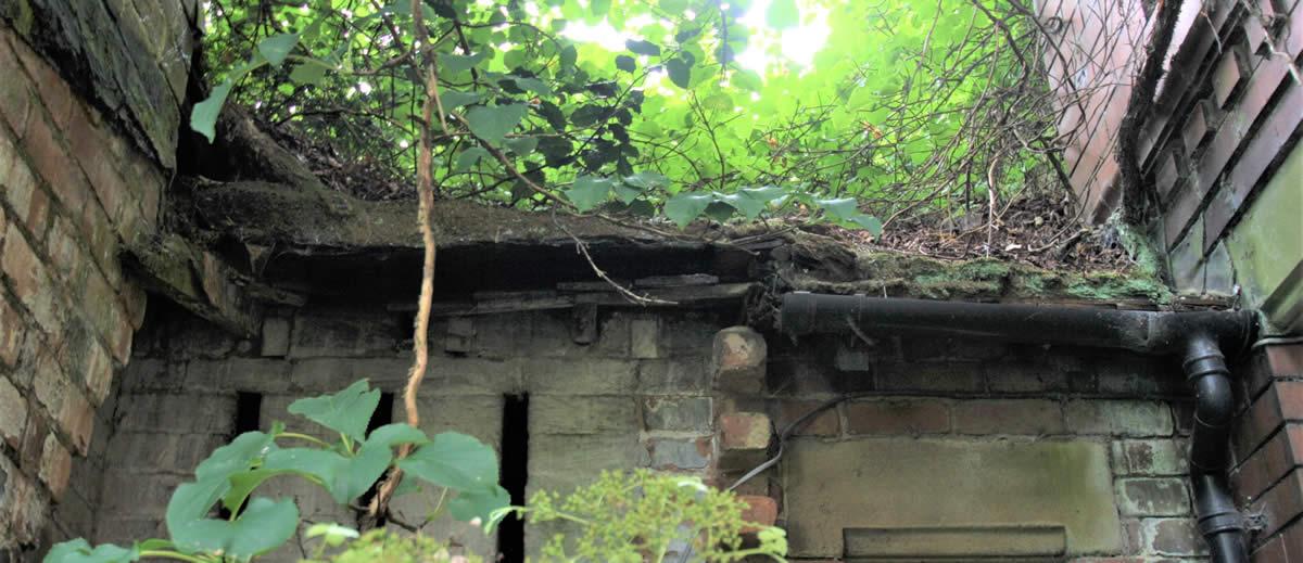 Damp and Timber Surveys - Nicholson Price Associates